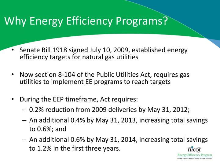 Why energy efficiency programs