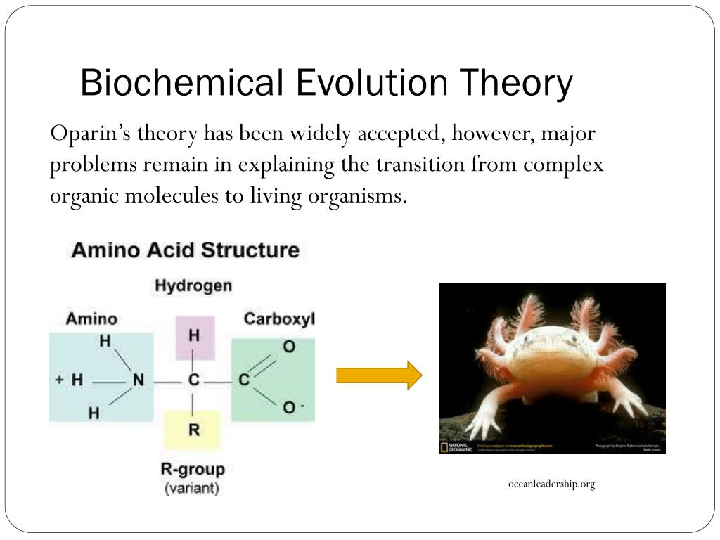 PPT - Life on Earth Topic 3: Evolution of Chemicals of Life ...