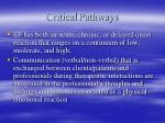 critical pathways