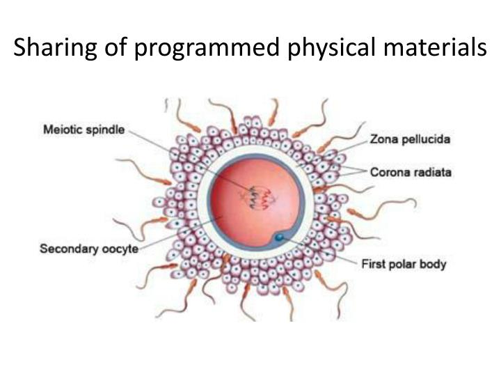Sharing of programmed physical materials
