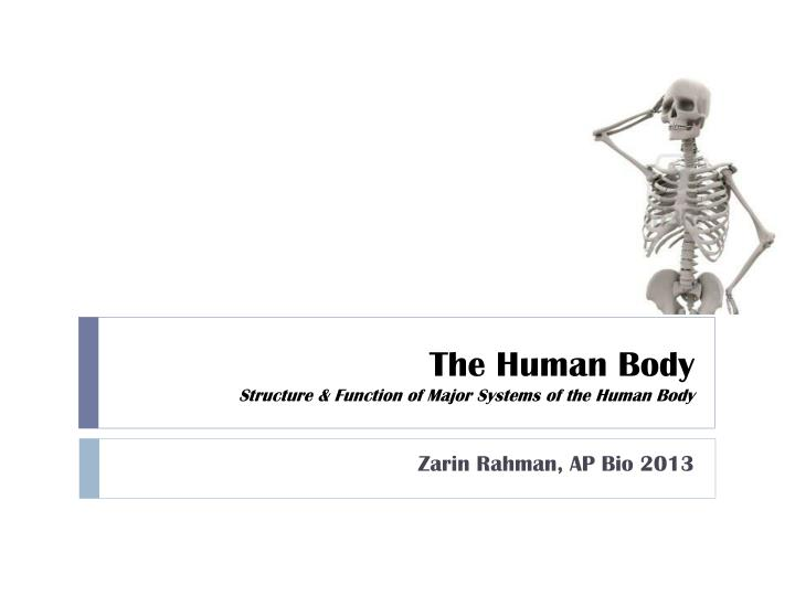 the human body structure function of major systems of the human body n.