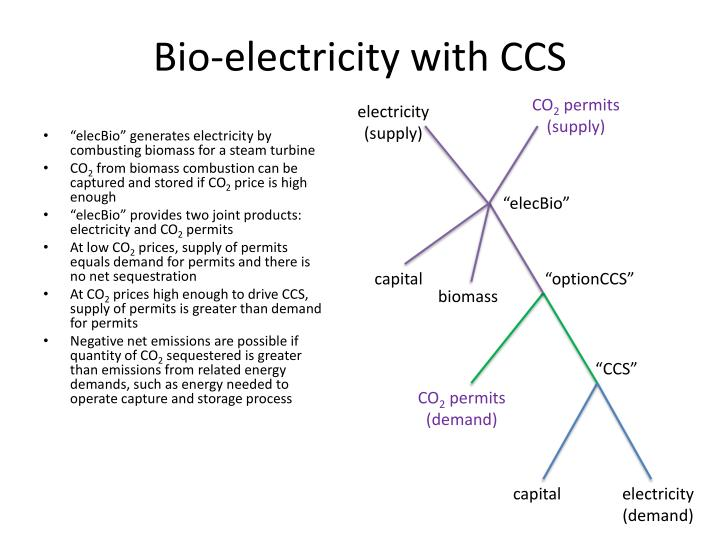 Bio-electricity with CCS