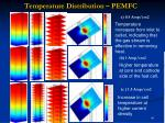 temperature distribution pemfc