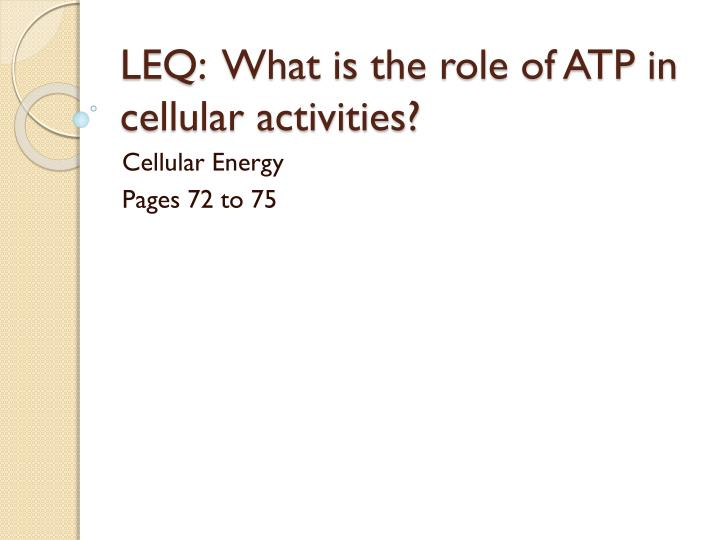 leq what is the role of atp in cellular activities n.