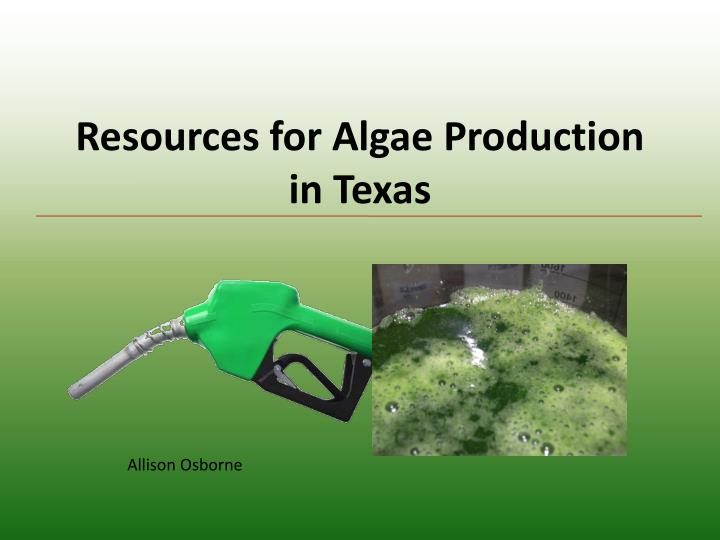 resources for algae production in texas n.