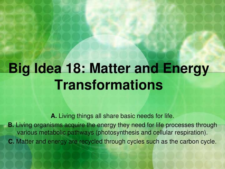 big idea 18 matter and energy transformations n.