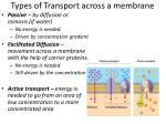 types of transport across a membrane