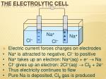the electrolytic cell