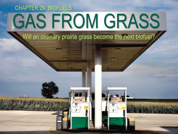 gas from grass will an ordinary prairie grass become the next biofuel n.