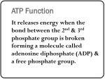 atp function