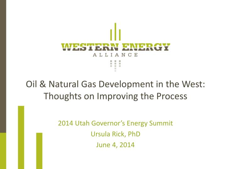 oil natural gas development in the west thoughts on improving the process n.