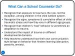 what can a school counselor do