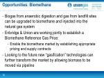 opportunities biomethane