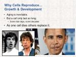 why cells reproduce growth development