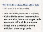 why cells reproduce making new cells