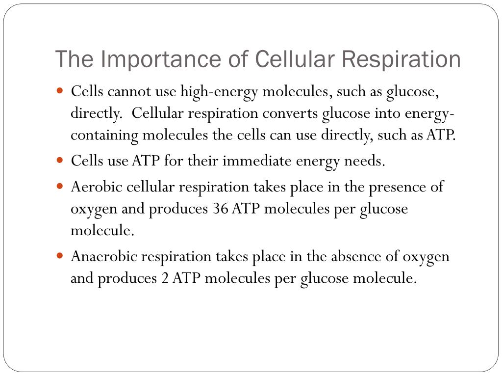Ppt 7 1 The Importance Of Cellular Respiration Powerpoint Presentation Id 1590703