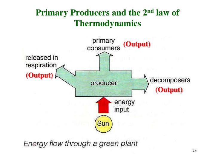 Primary Producers and the 2
