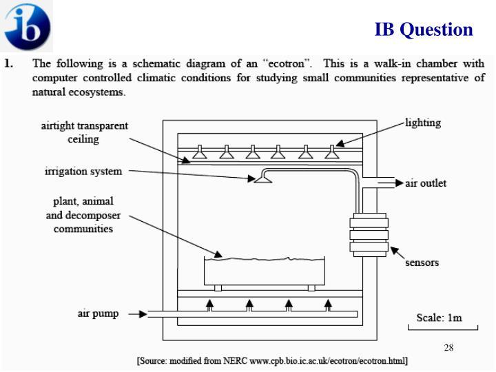 IB Question