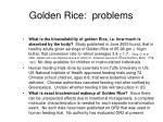 golden rice problems4