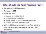 what should the pupil premium buy
