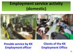 employment service activity domestic