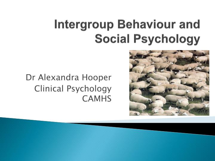 intergroup behaviour and social psychology n.