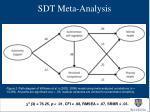 sdt meta analysis2