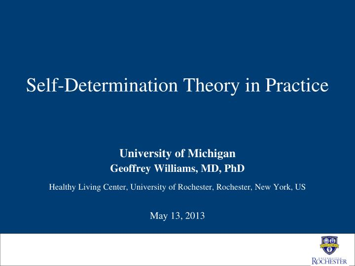 self determination theory in practice n.