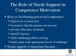 the role of needs support in competence motivation