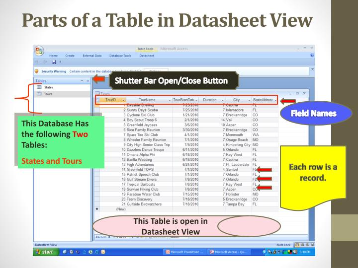 Parts of a Table in Datasheet View