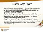 cluster foster care