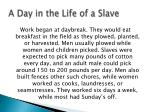 a day in the life of a slave