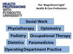 the magnificent eight health care professions
