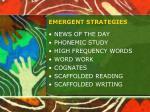 emergent strategies