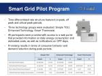 smart grid pilot program