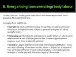 b reorganising concentrating body labour1