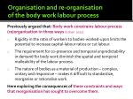 organisation and re organisation of the body work labour process