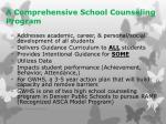 a comprehensive school counseling program