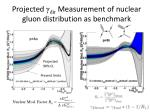 projected dir measurement of nuclear gluon distribution as benchmark
