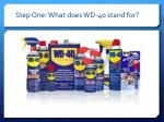 step one what does wd 40 stand for