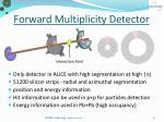 forward multiplicity detector