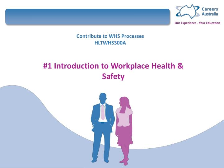 contribute to whs processes hltwhs300a n.