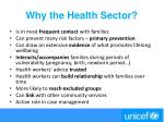 why the health sector