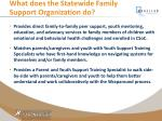 what does the statewide family support organization do