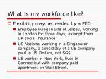 what is my workforce like2