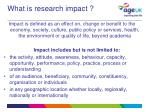 what is research impact