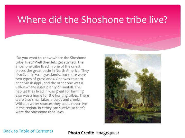 Ppt The Shoshone Tribe Powerpoint Presentation Id1591843