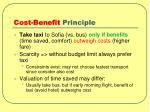 cost benefit principle