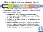 life dignity of the human person