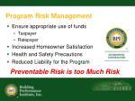 program risk management
